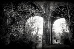 viaduct - Lisa Langrish (Jan 2013)