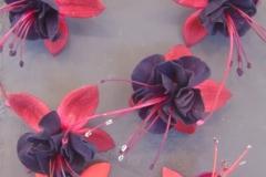 Six fuchsia (1)