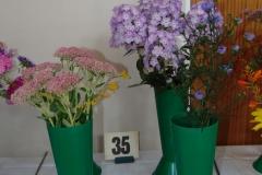 perennial flowers - 1 cultivar