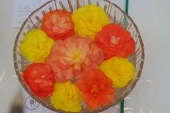 flowerheads-in-water