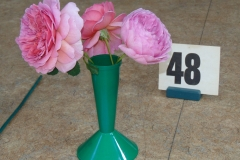 3 stems (rose not specified)