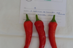 3 Chillies - Highly commended