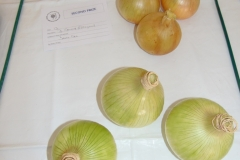 3 Onions over 250g