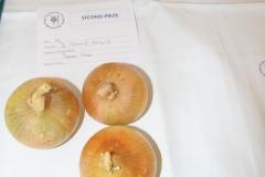 3 Onions under 250g