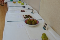 fruit-table