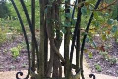 Ironwork with plants