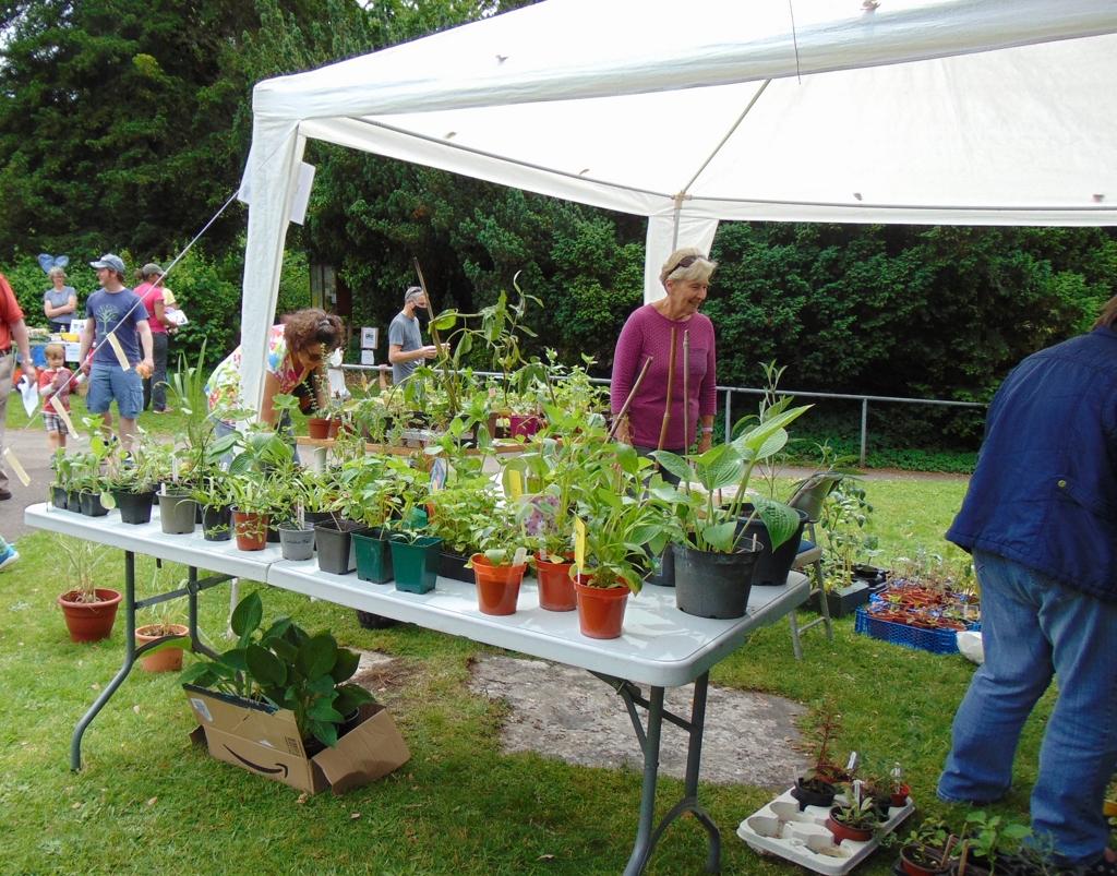 Locally produced plants - Alan Morris